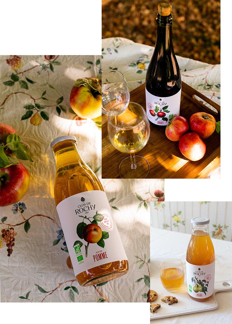 clos de rochy producteur pommes poires bio Yonne jus